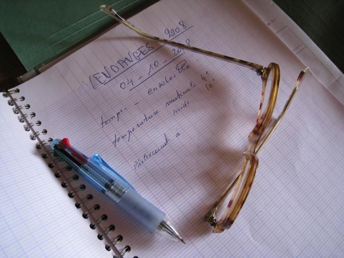 Vendanges 2008 chez nous enfin presque - Il faut cultiver notre jardin analyse ...